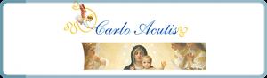 www.carloacutis.com